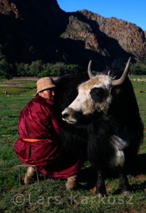 mongolei_7